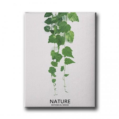 Botanik Canvas Tablo